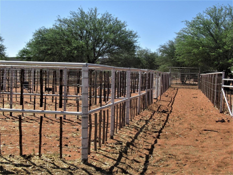 Animal handling kraals