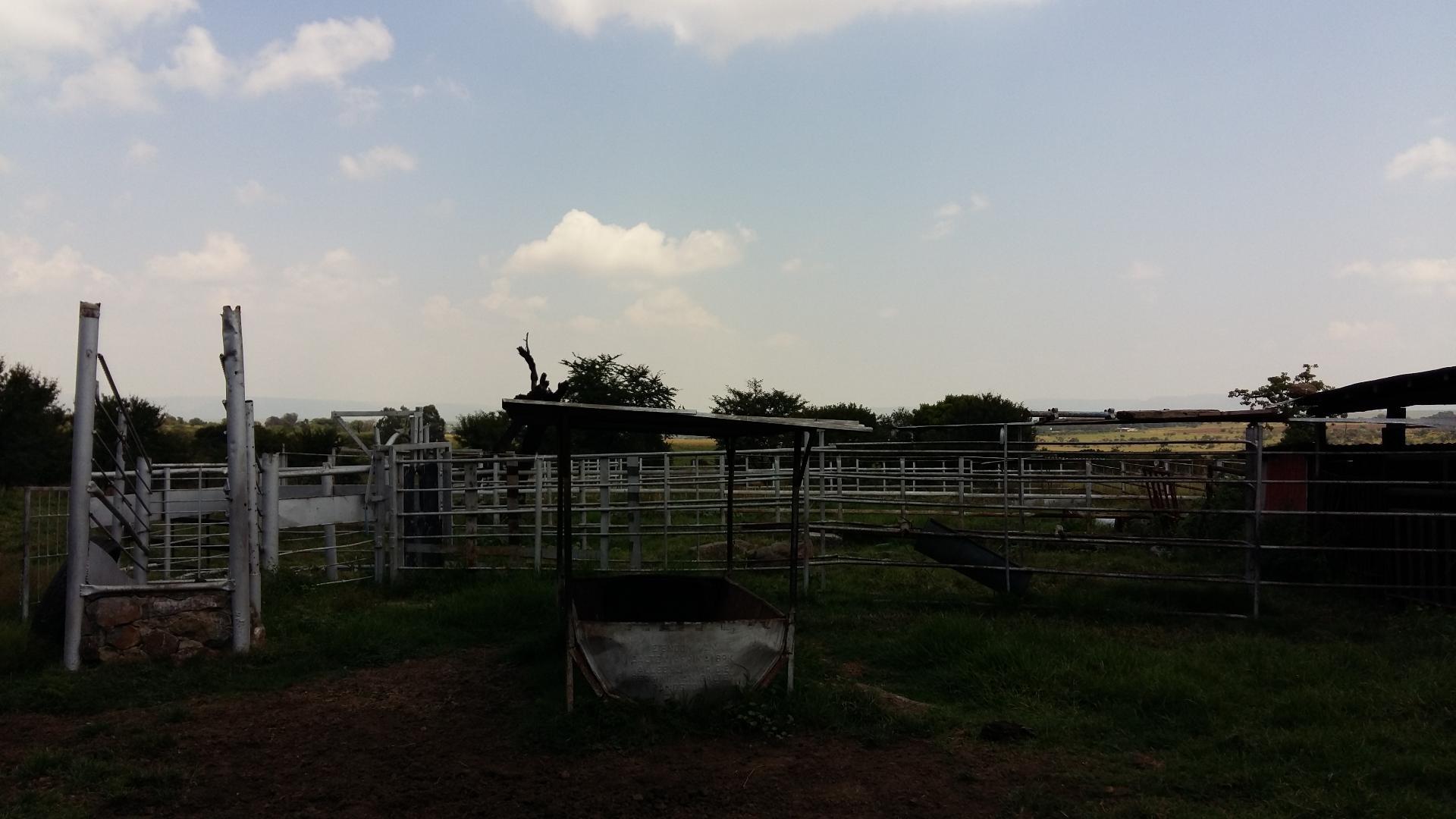 Farm For Sale in Laersdrif