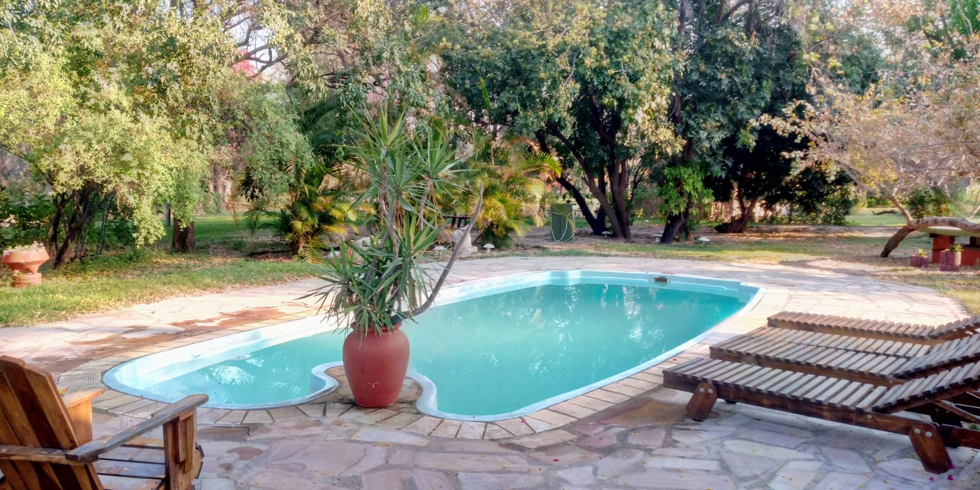 A swimming pool to help you relax as you braai