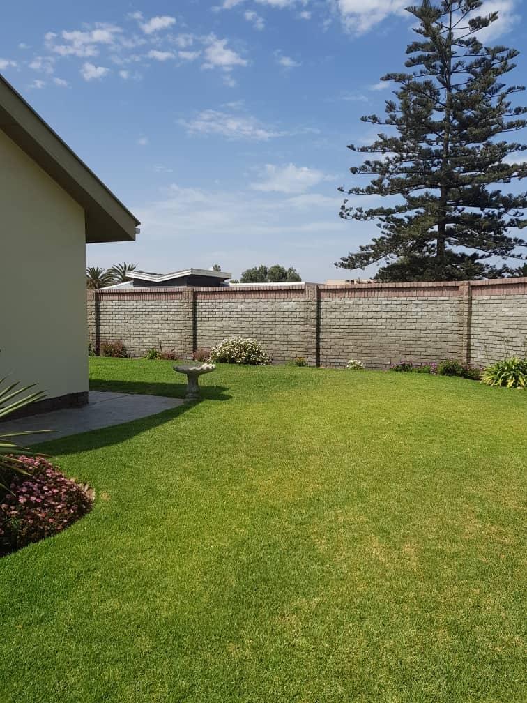 Front garden - high boundary walls
