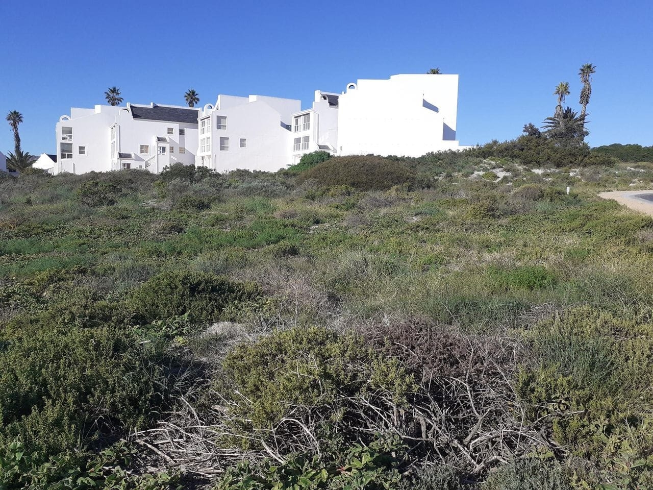 View of neighboring properties from stand