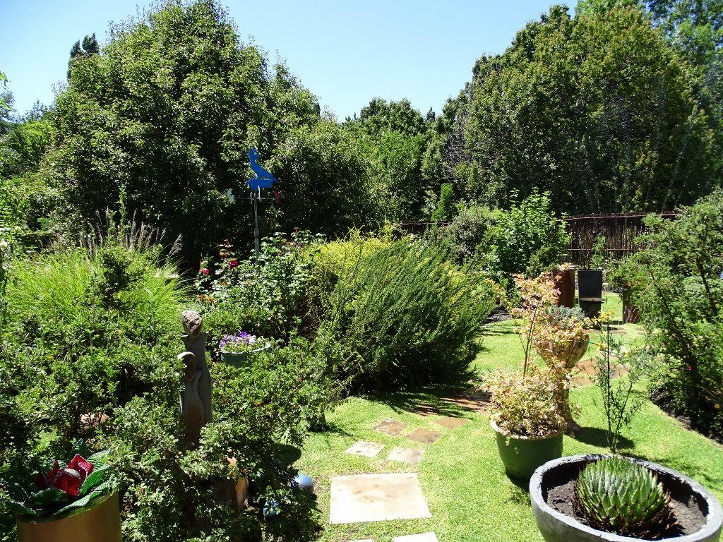 Beautiful established garden with pathways