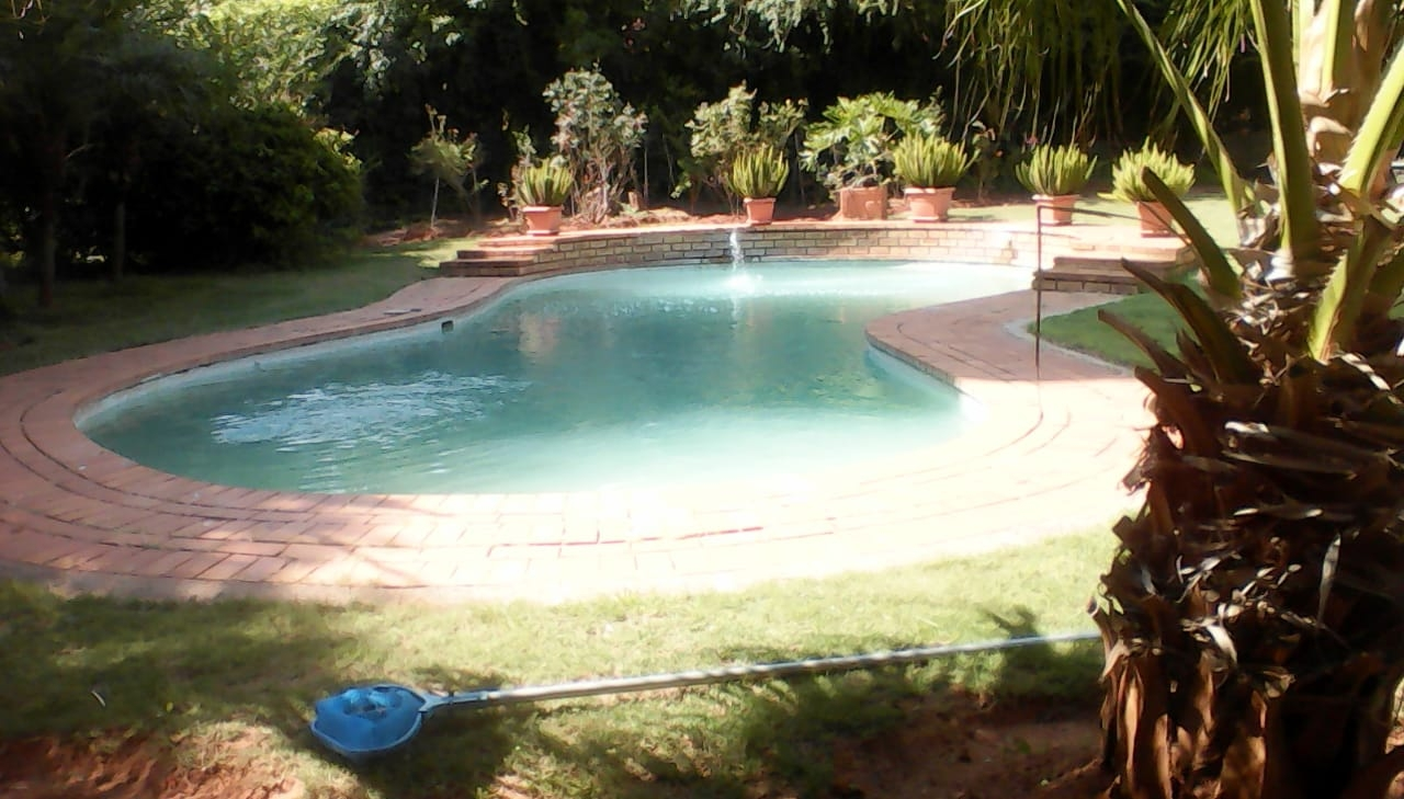 Sparkling pool in garden