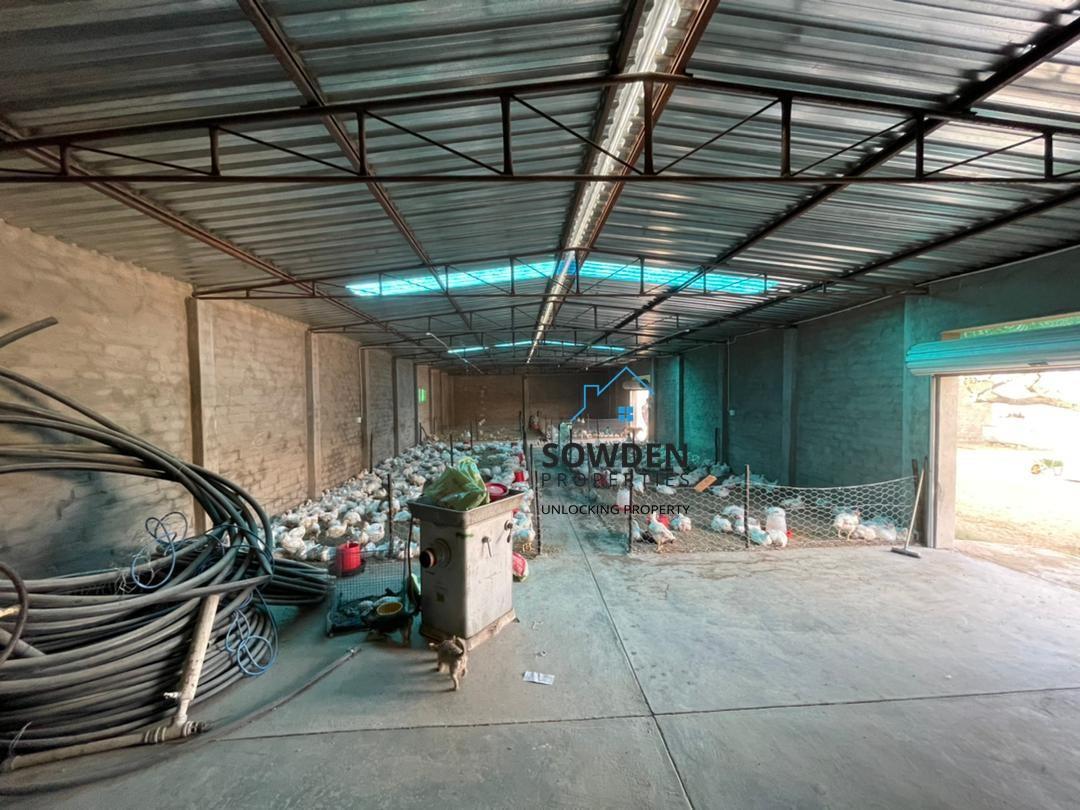 Main shed