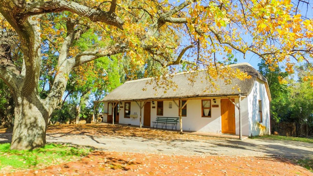 property-4323767-85416621_o.jpeg