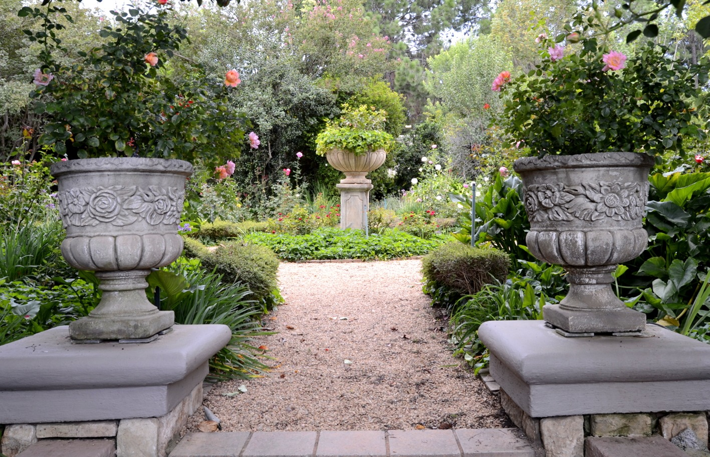 rose garden.jpeg