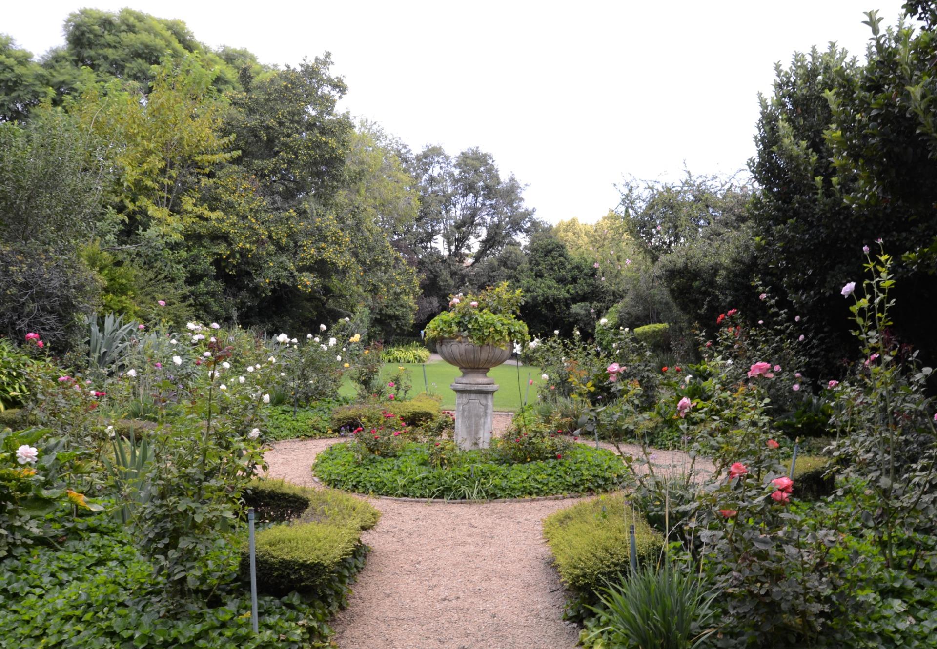 rose garden 2.jpeg