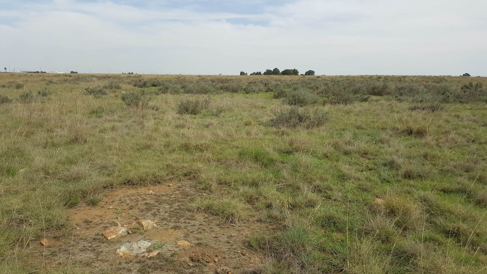 vacant land agricultural for sale in union forest