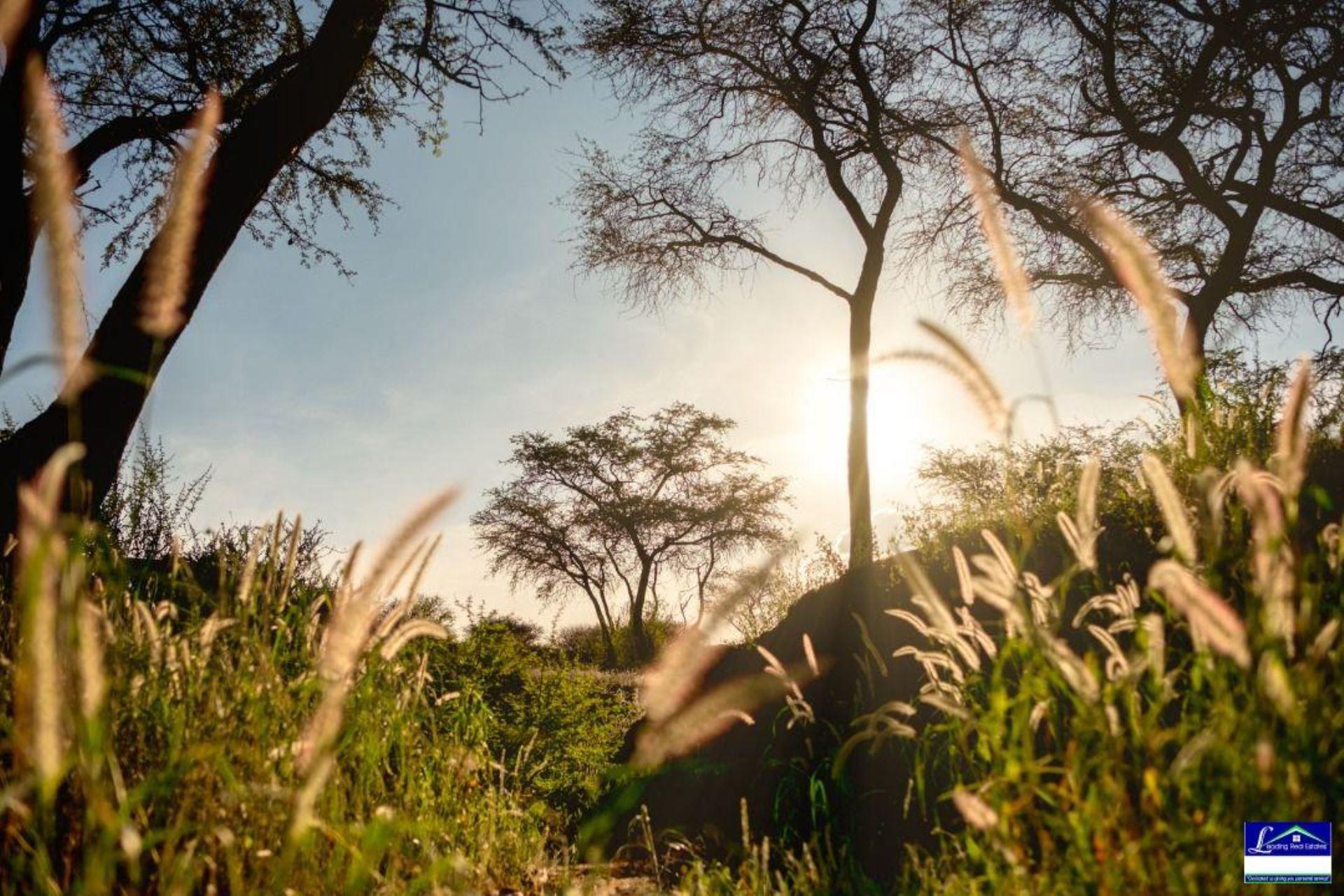 Windhoek, Dordabis Raod, Echo Estate