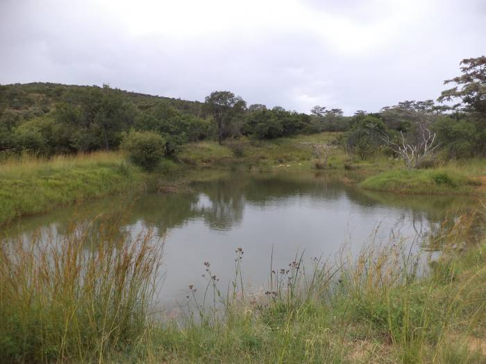 3 Bedroom Farm for sale in Nylstroom 569218 : photo#54