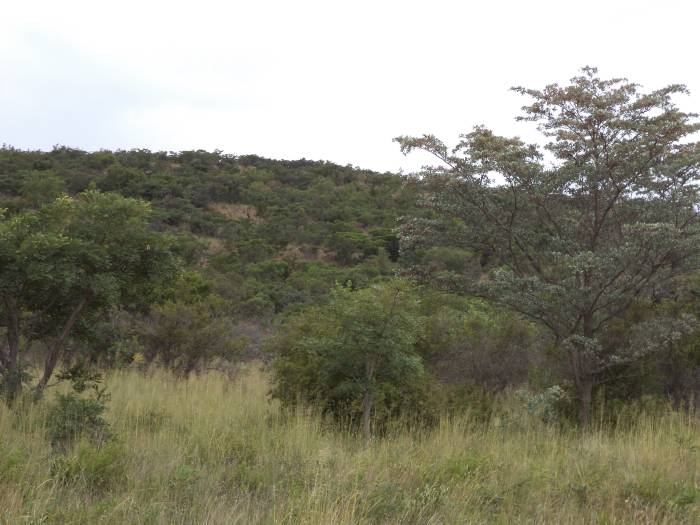 3 Bedroom Farm for sale in Nylstroom 569218 : photo#51