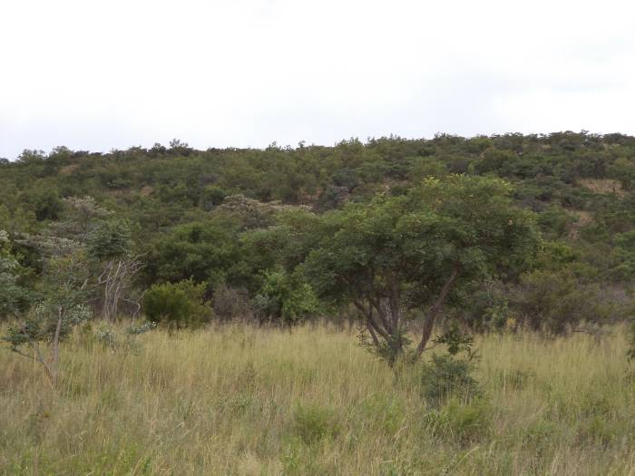 3 Bedroom Farm for sale in Nylstroom 569218 : photo#52