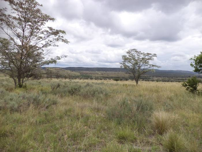 3 Bedroom Farm for sale in Nylstroom 569218 : photo#64