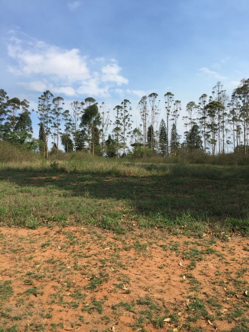 Vacant Land Residential For Sale In White River