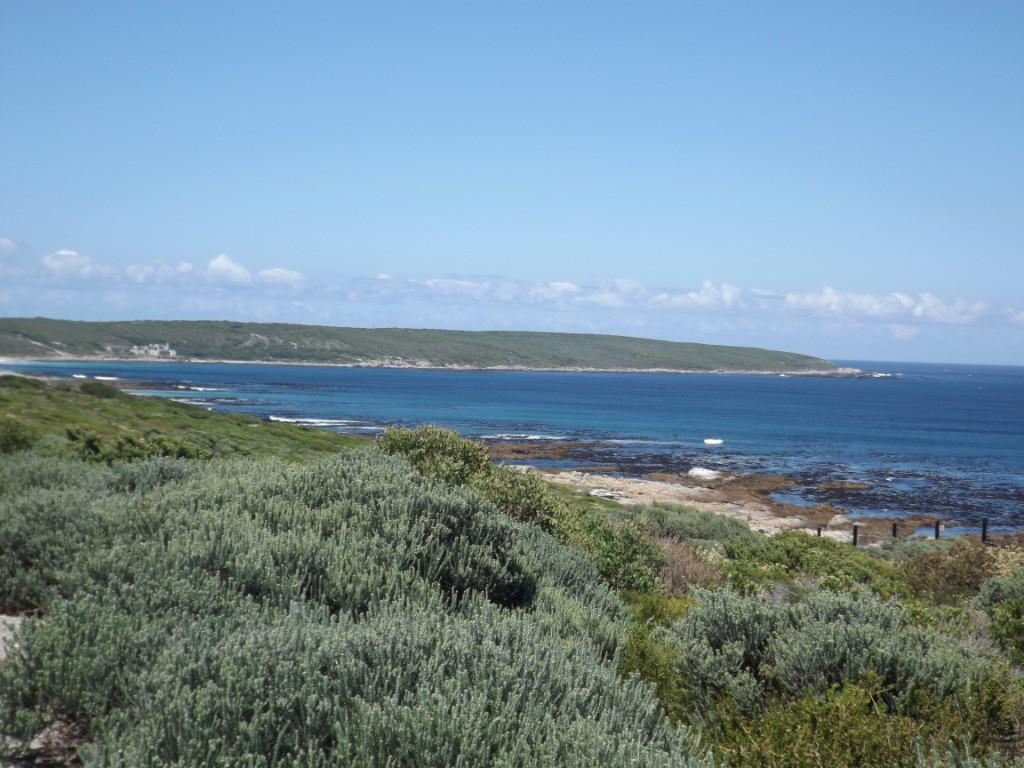 Ocean view  -  in the direction of the Birkenhead Peninsula.