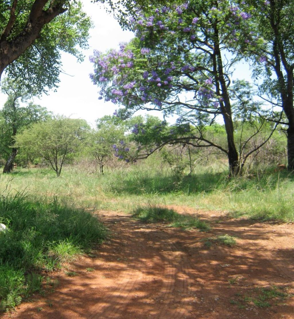 Vacant Land Agricultural For Sale In Onderstepoort A H