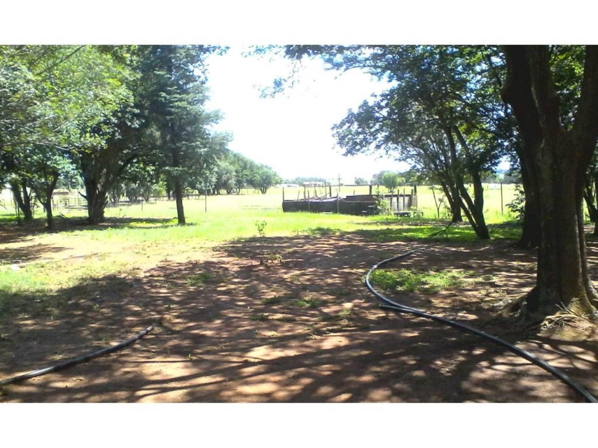 Vacant Land Residential Pending Sale In Breyten
