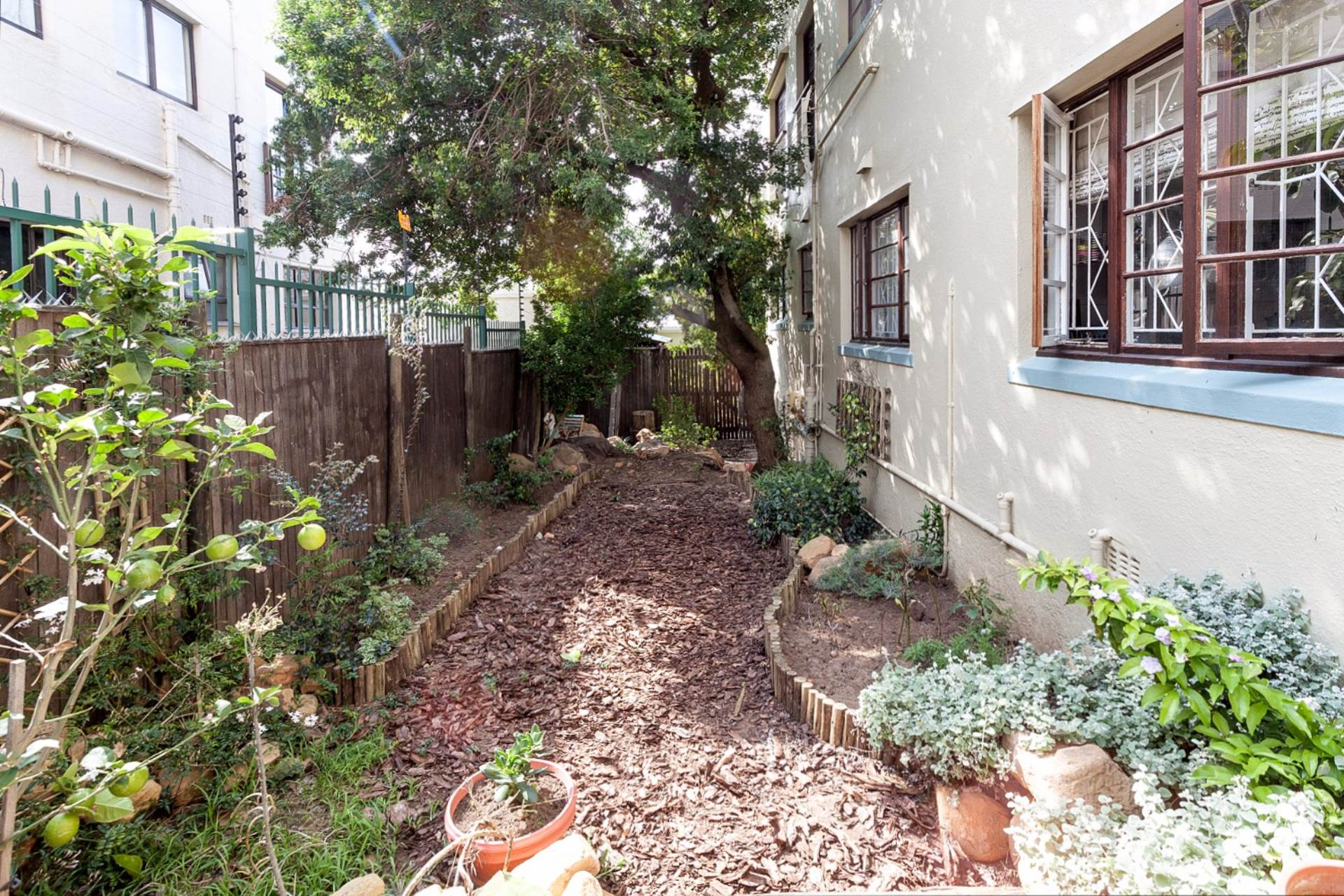 Vredehoek property for sale. Ref No: 13534665. Picture no 5