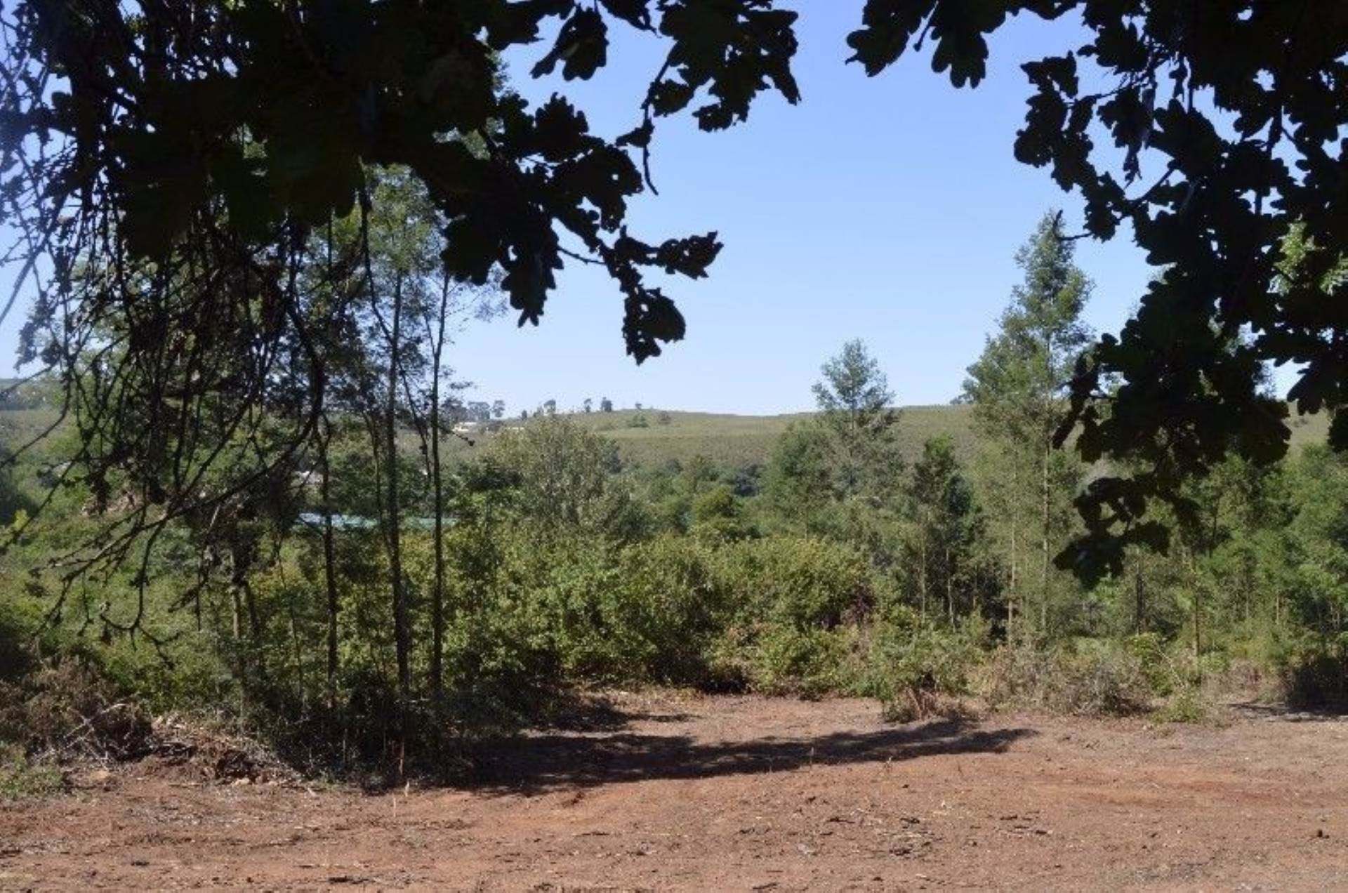 Vacant Land Commercial Pending Sale In Suurbraak