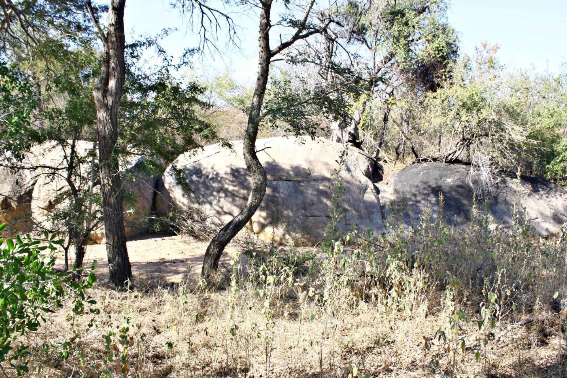 Vacant Land Residential For Sale In Leopard Rock