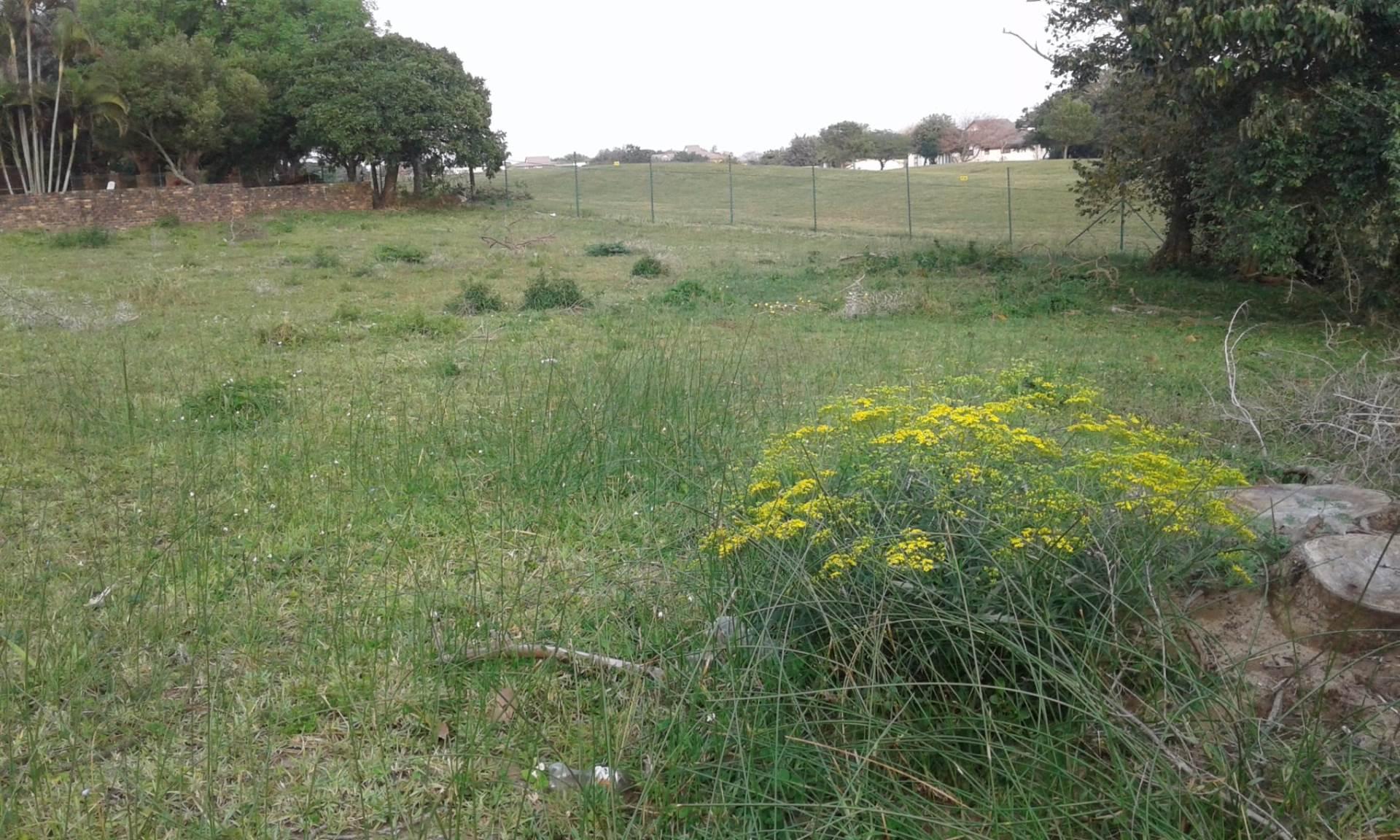 Vacant Land Residential For Sale In Meer En See