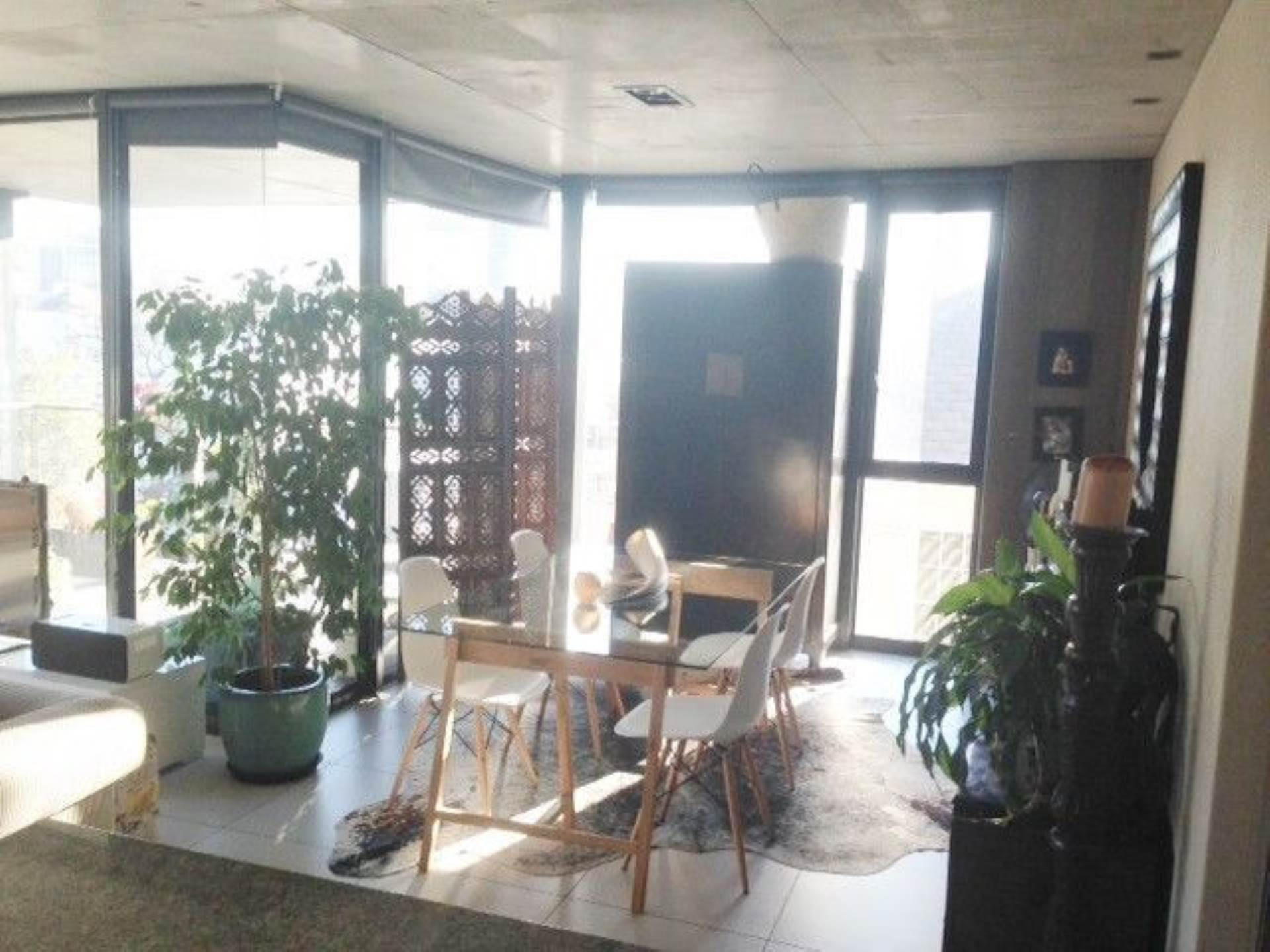 Gardens property to rent. Ref No: 13535836. Picture no 3