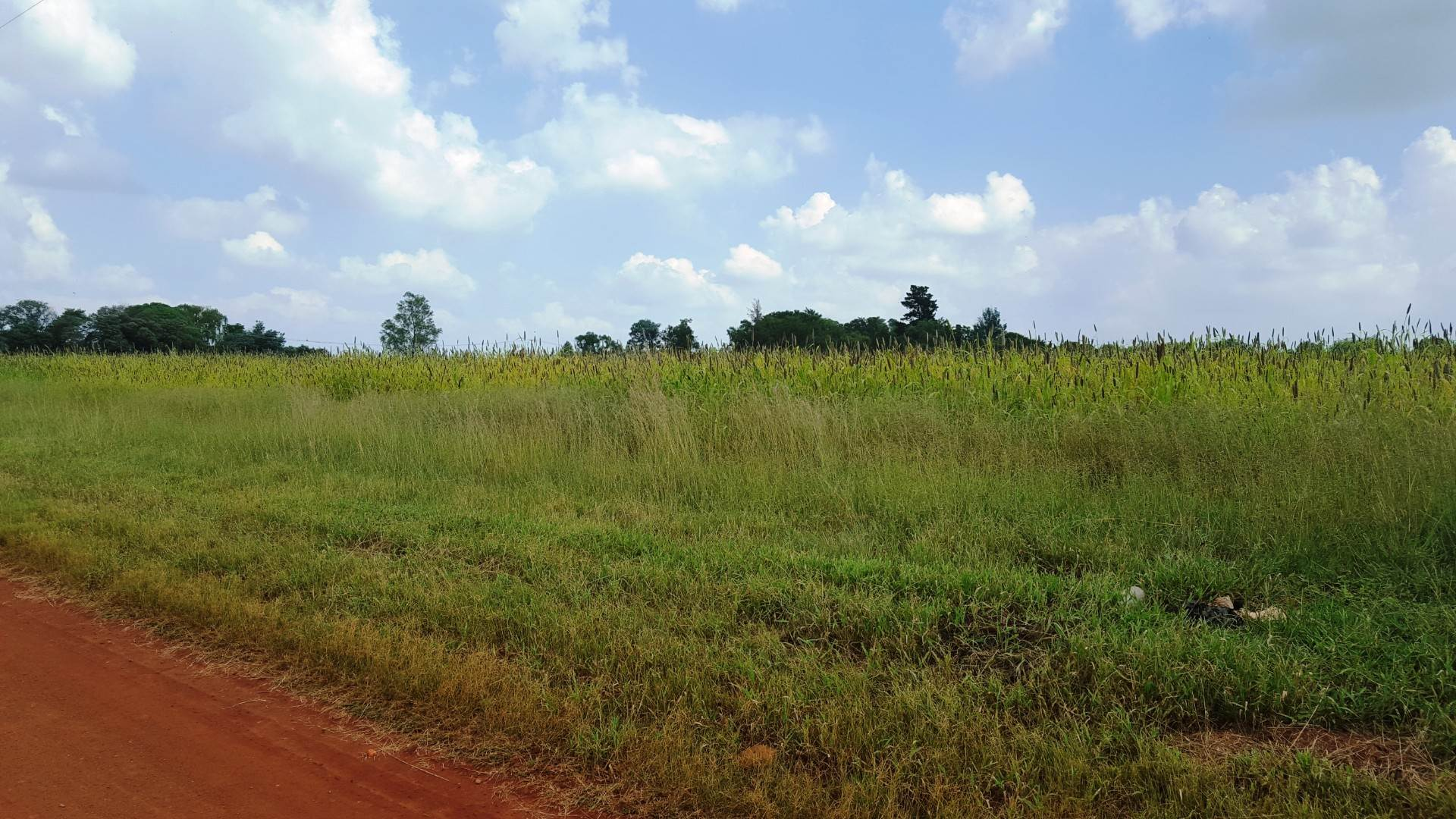 Vacant Land Agricultural For Sale In Rietkol A H