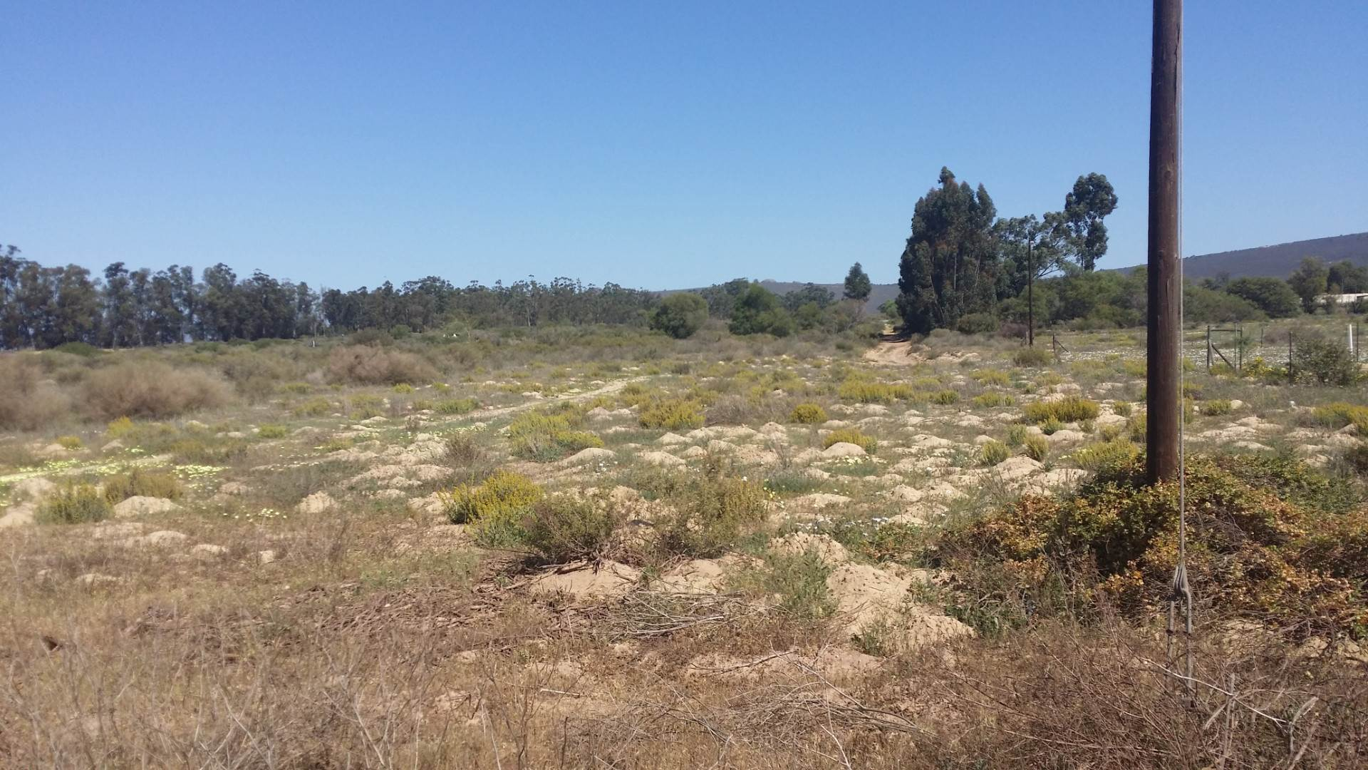 Vacant Land Residential For Sale In Redelinghuys