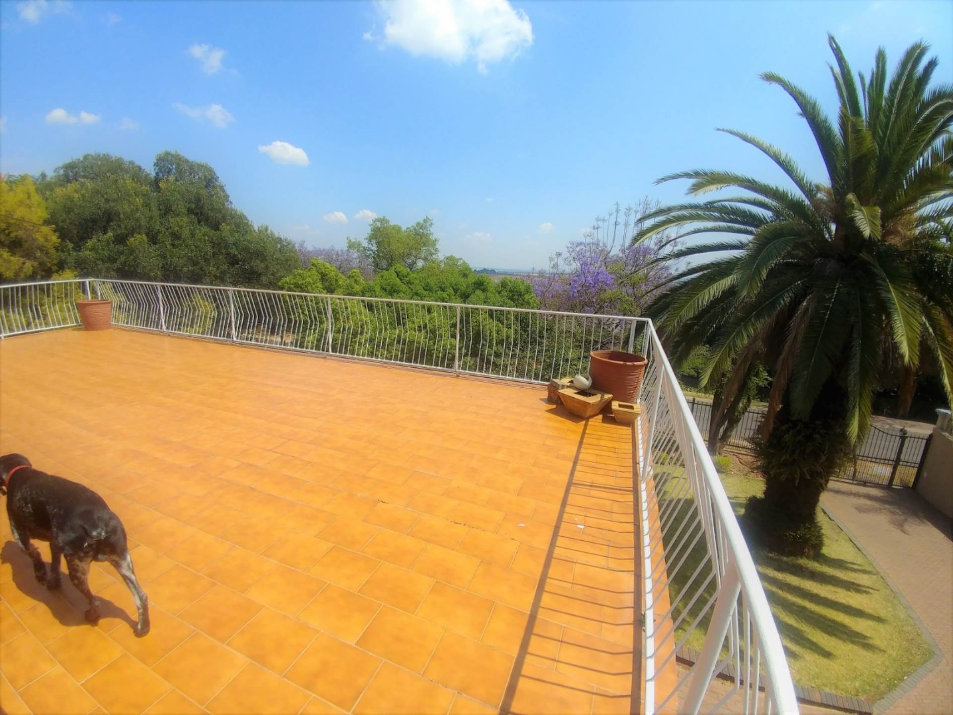Waterkloof Ridge property for sale. Ref No: 13539454. Picture no 9