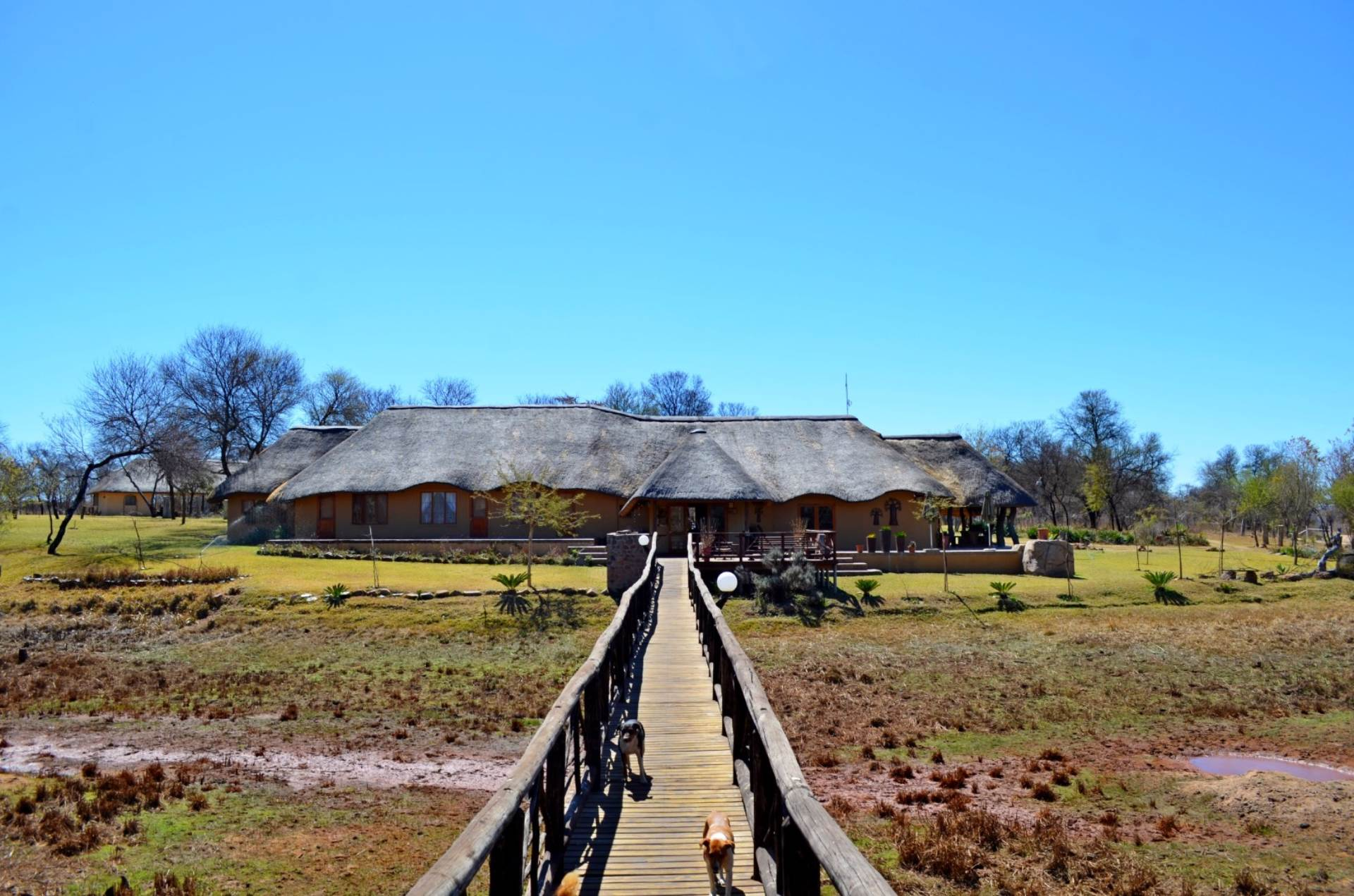 Farm For Sale In Waterberg