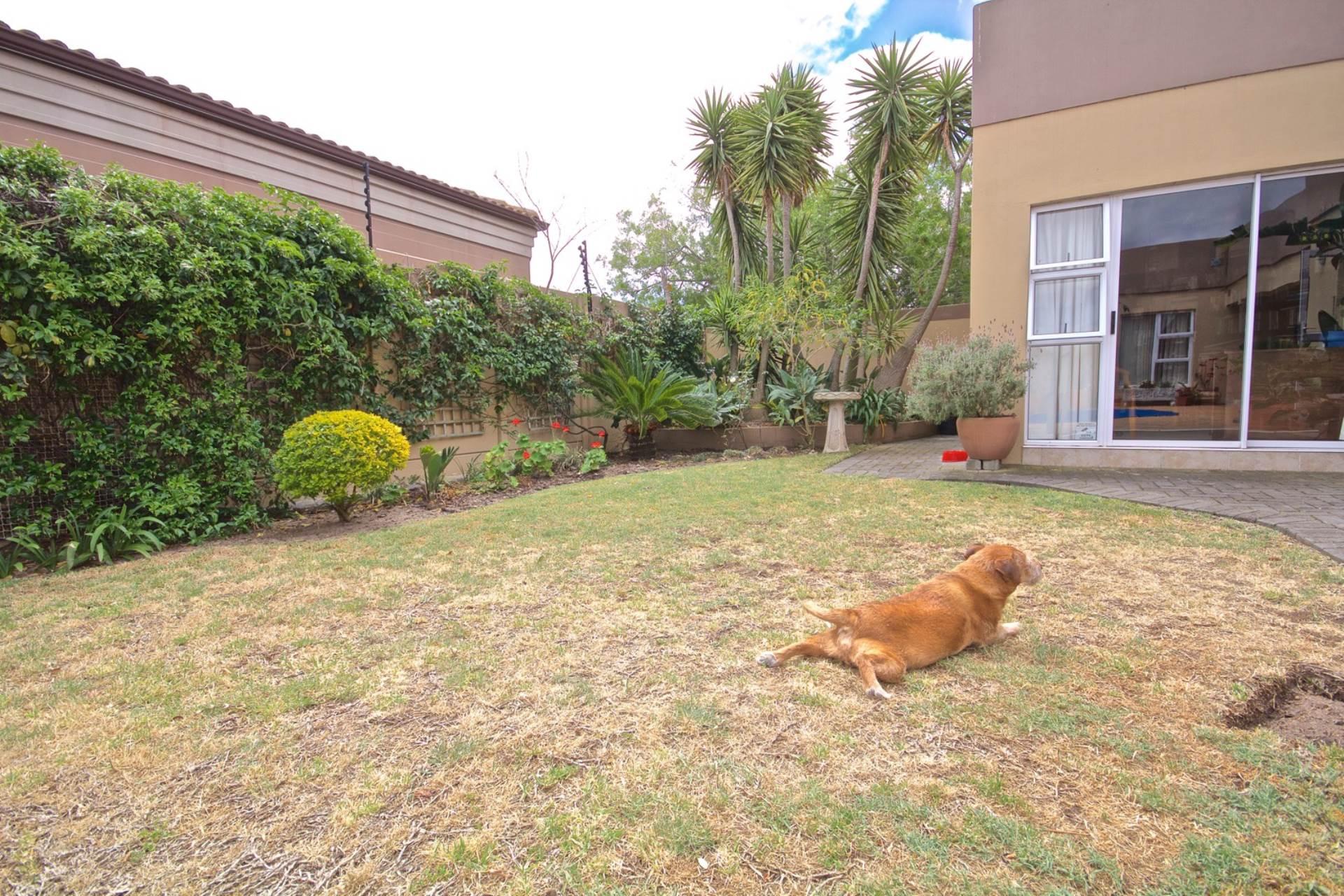 Parklands property for sale. Ref No: 13543579. Picture no 17