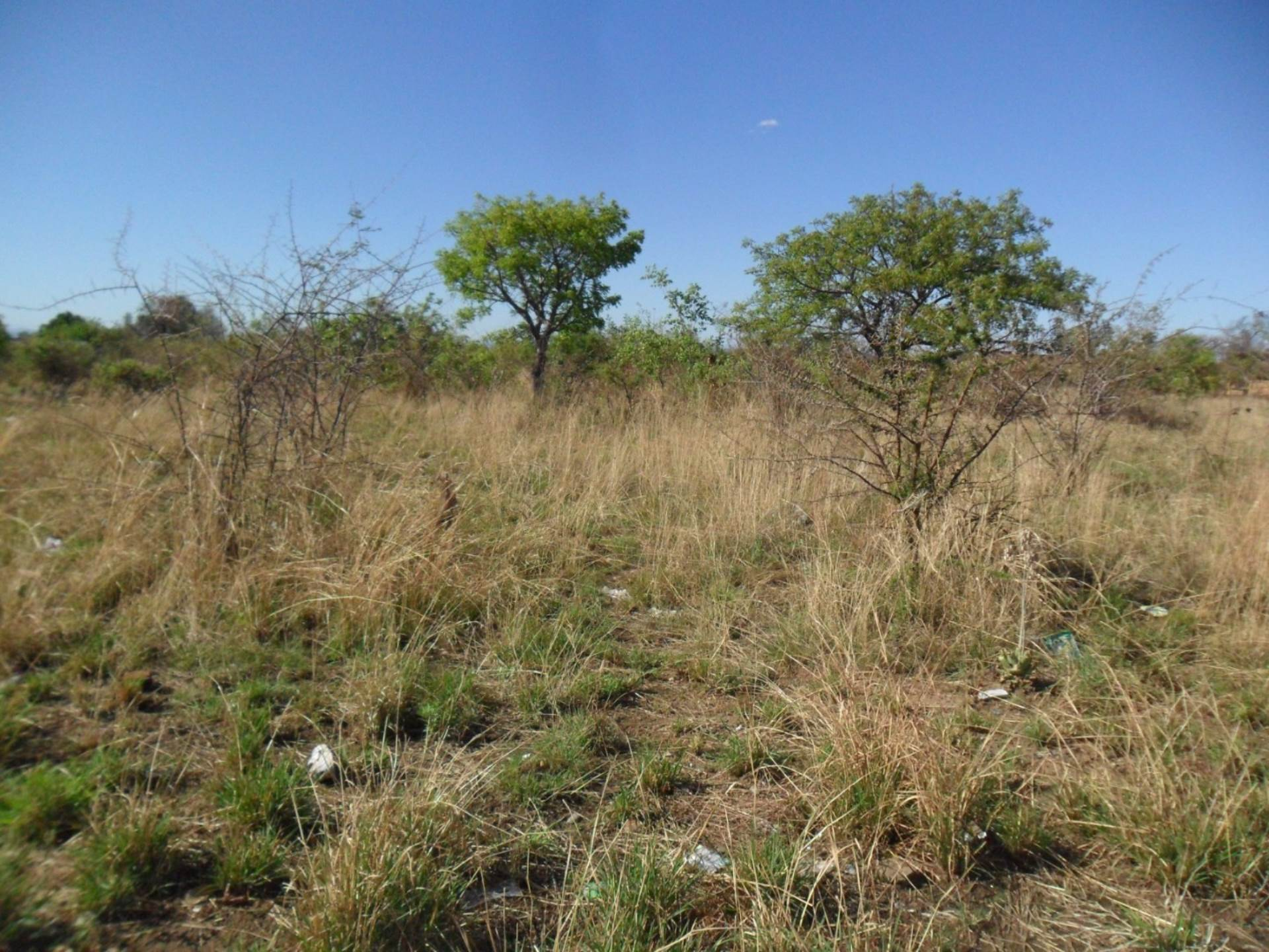Vacant Land Residential For Sale In Lethlabile