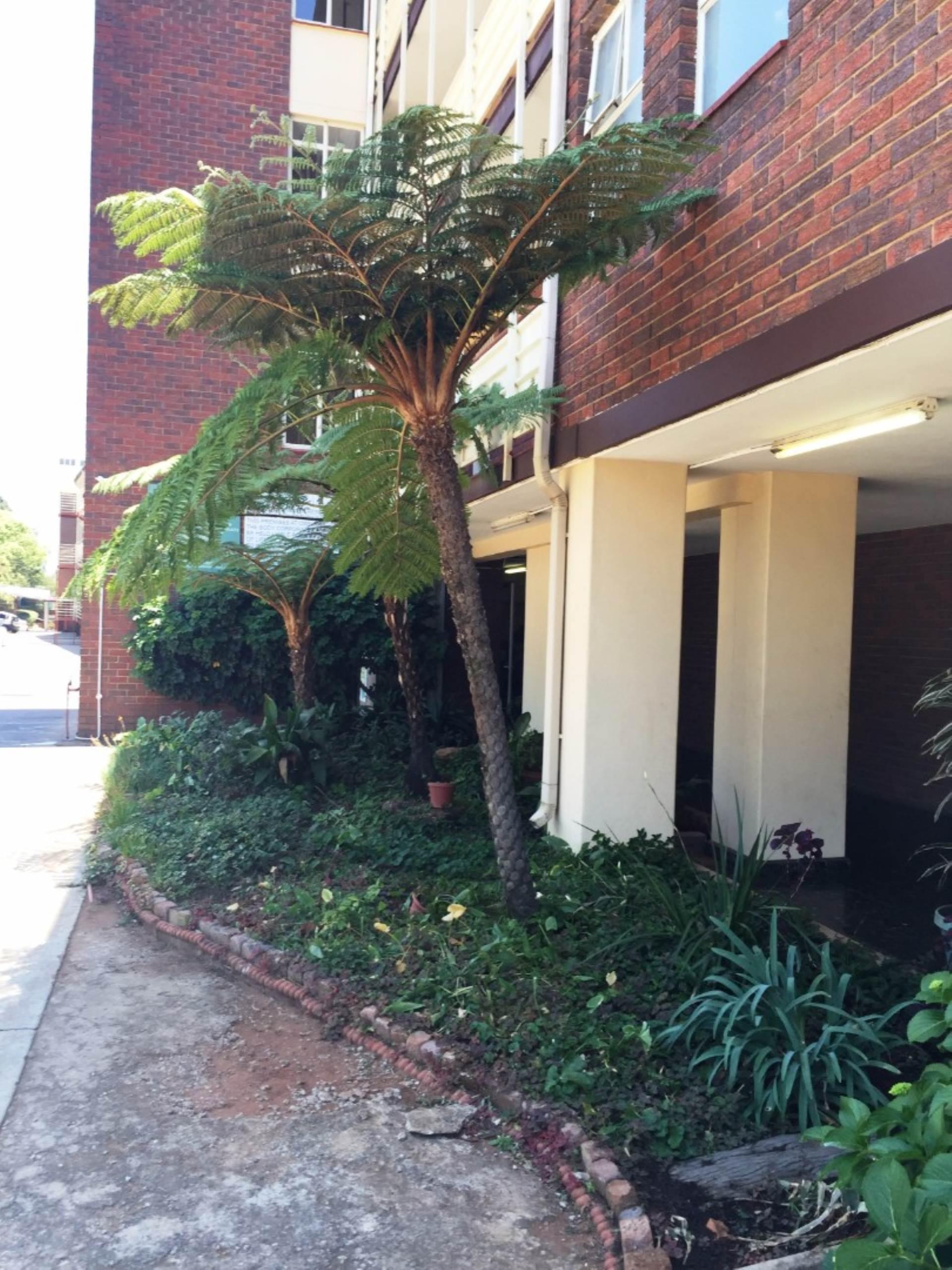 Pretoria, Queenswood Property    Houses To Rent Queenswood, QUEENSWOOD, Apartment  property to rent Price:,  4,90*