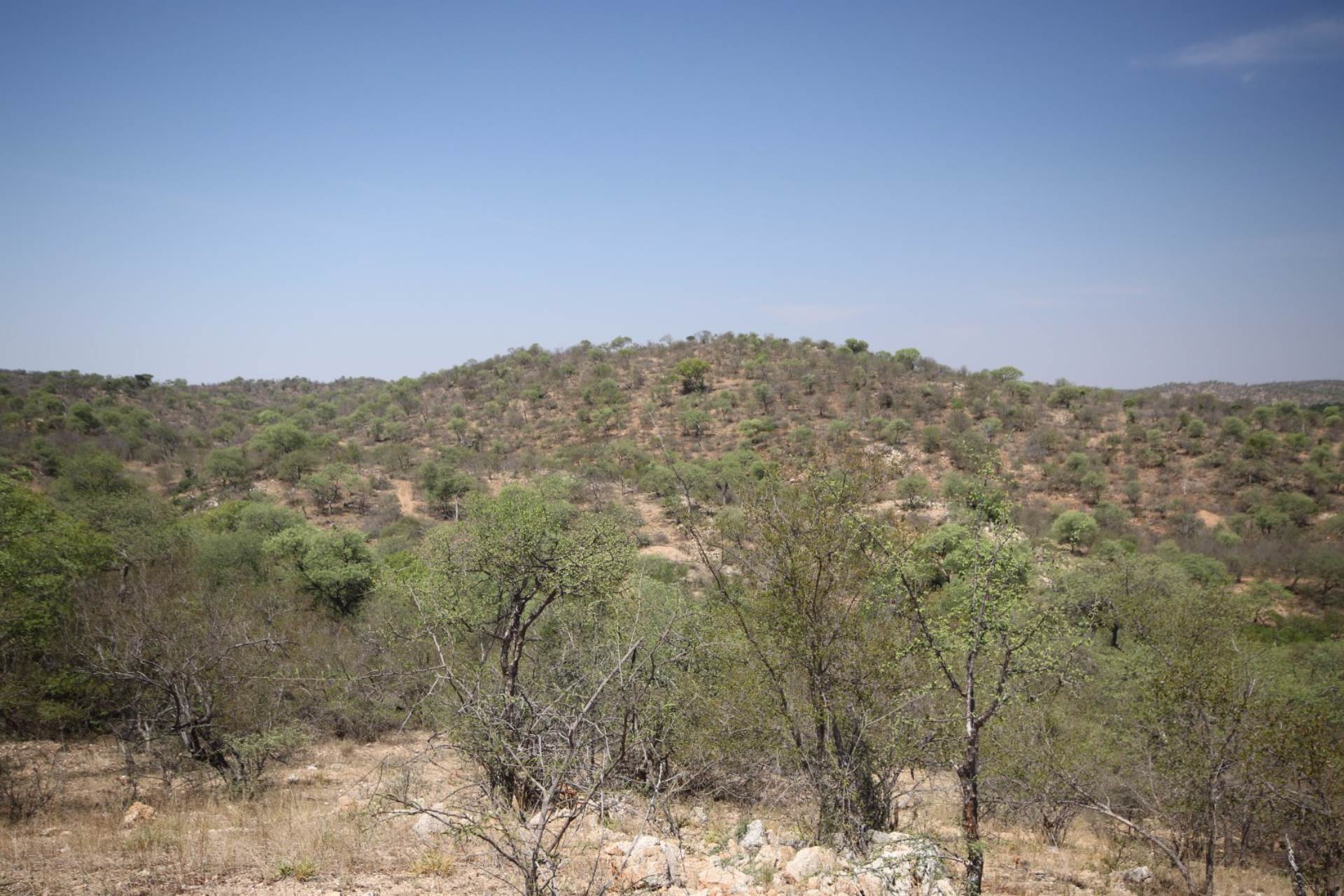 Vacant Land Residential For Sale In Parsons Game Reserve