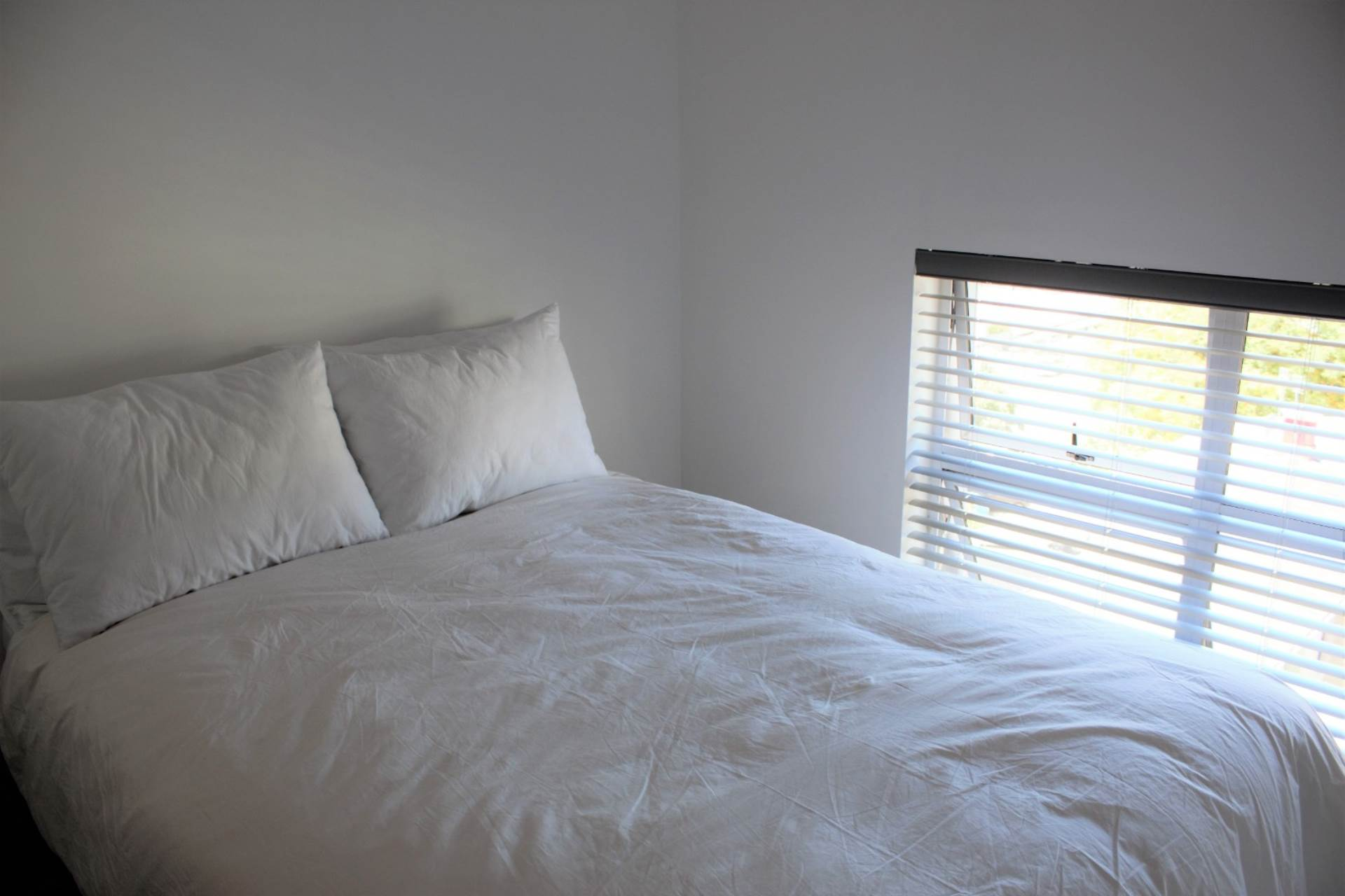 Green Point property to rent. Ref No: 13561762. Picture no 11