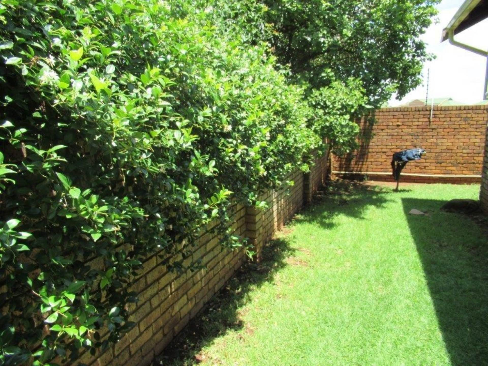 Highveld property for sale. Ref No: 13589374. Picture no 11