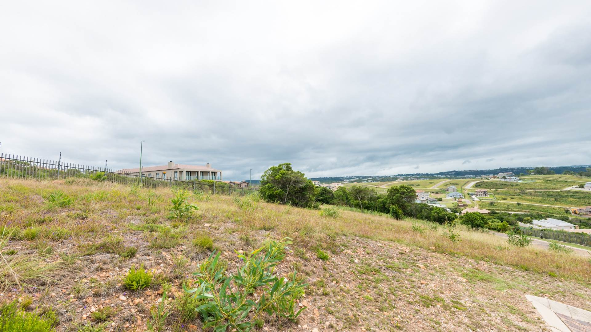 Vacant Land Agricultural For Sale In Whale Rock