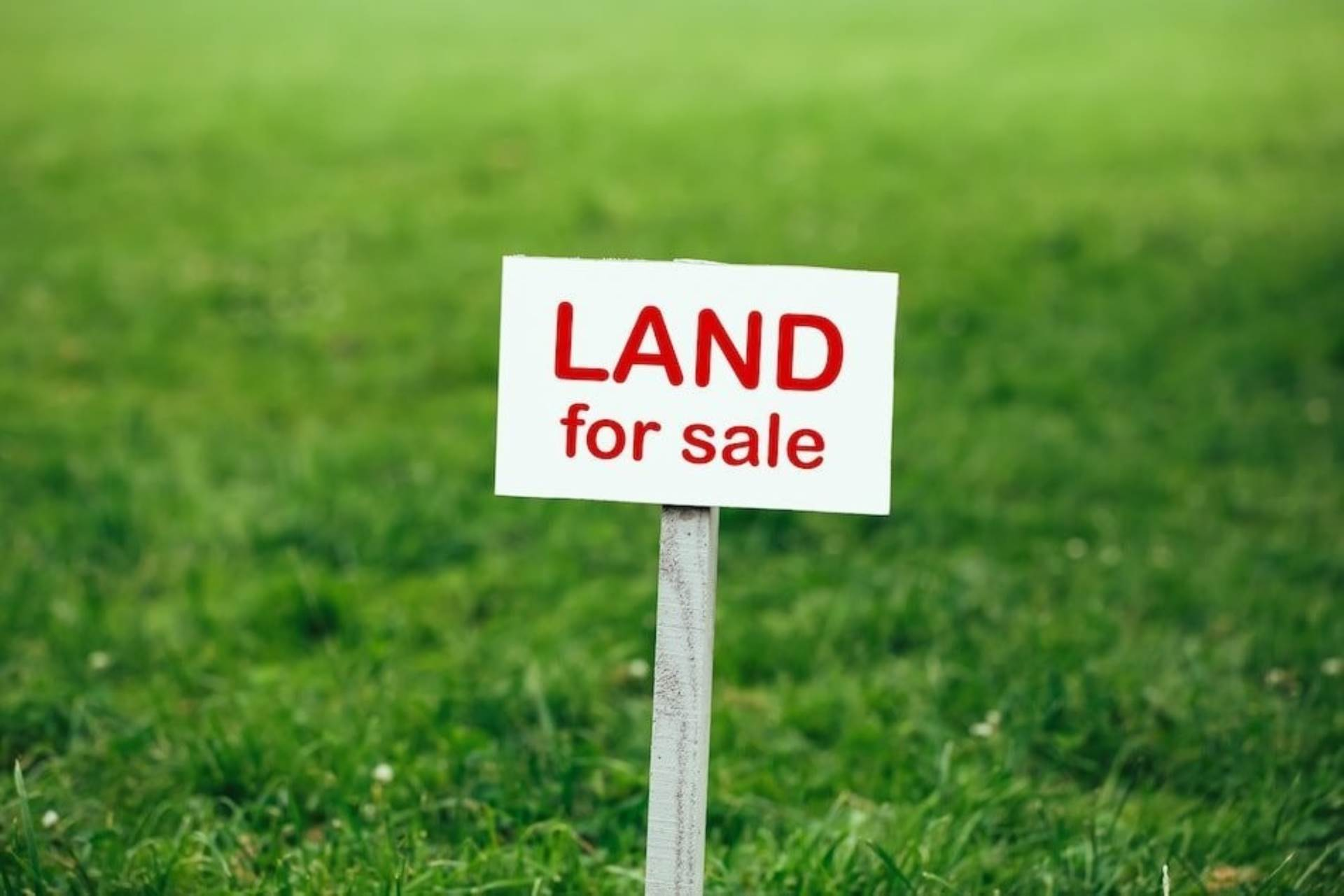 Vacant Land Commercial For Sale In Birdswood