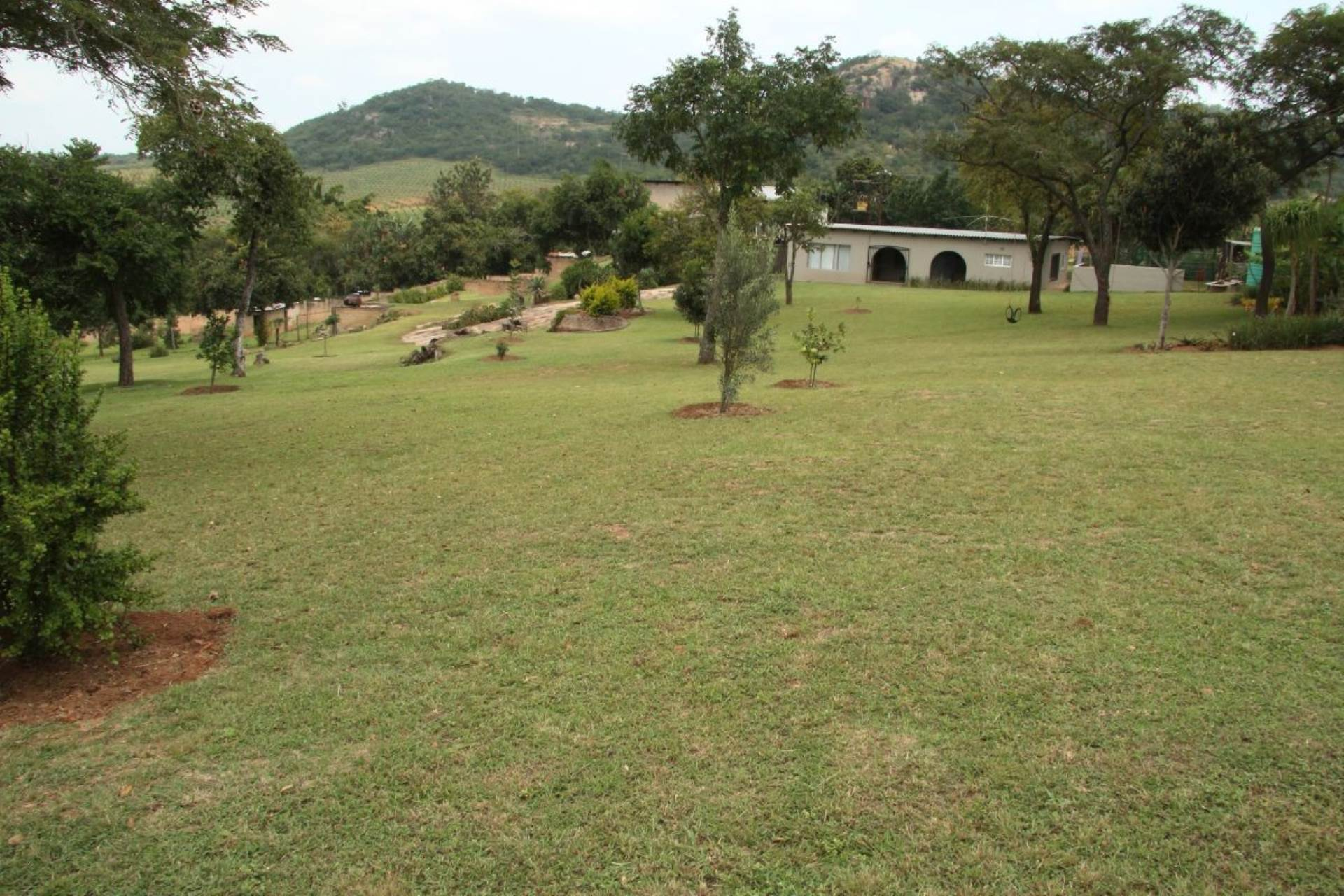 6 BedroomSmall Holding For Sale In White River