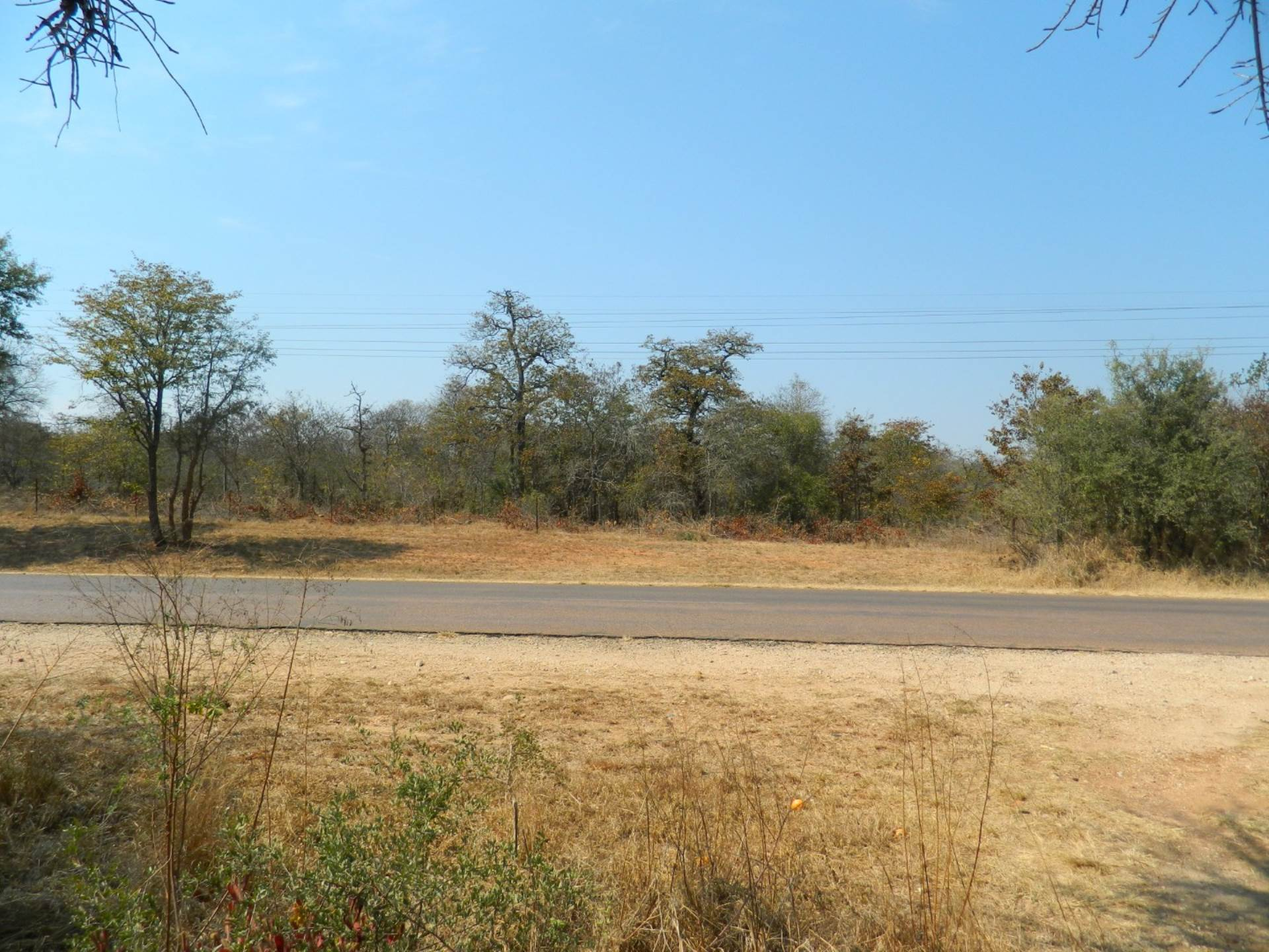 Vacant Land Agricultural For Sale In Phalaborwa