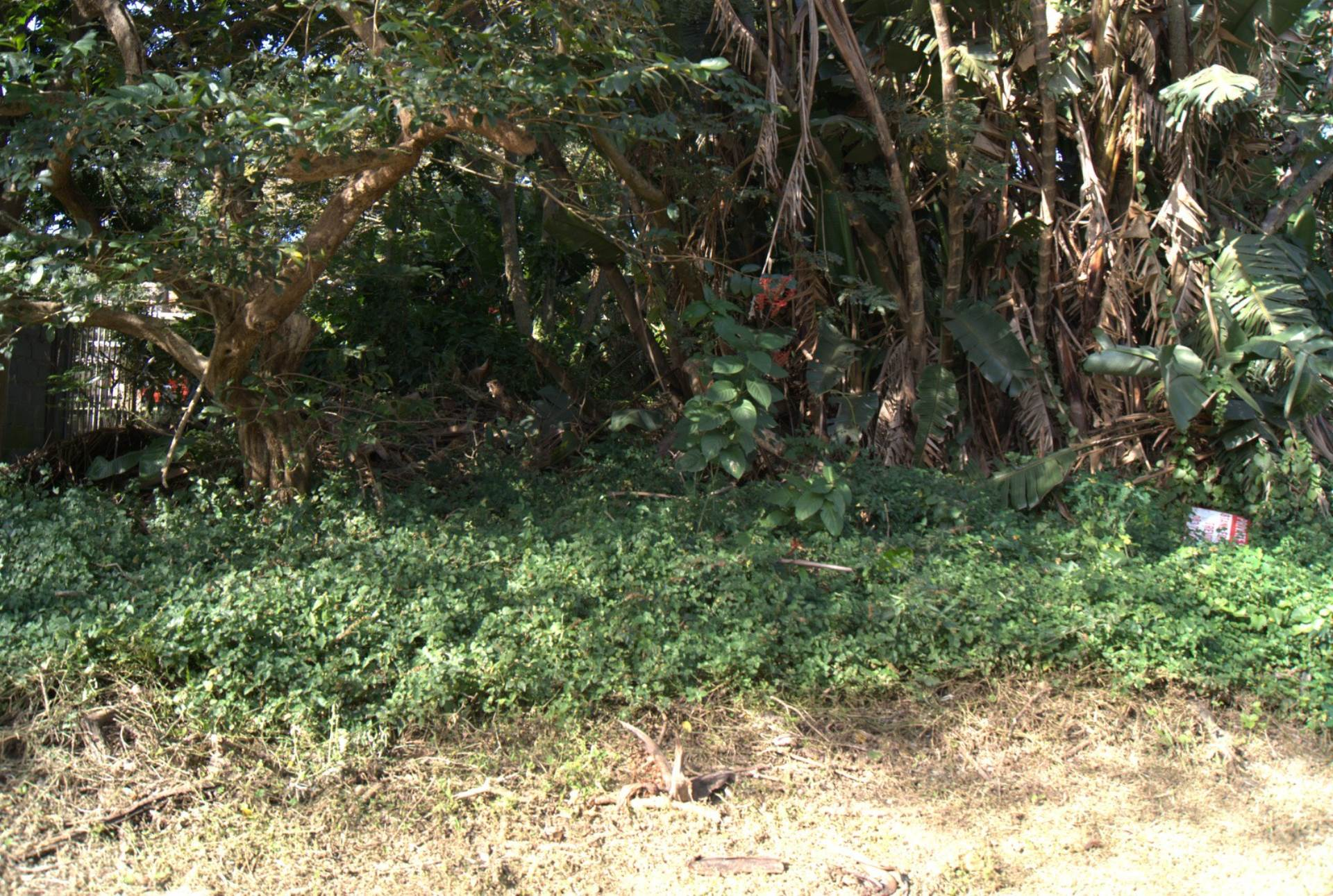 Vacant Land Residential For Sale In St Michaels On Sea
