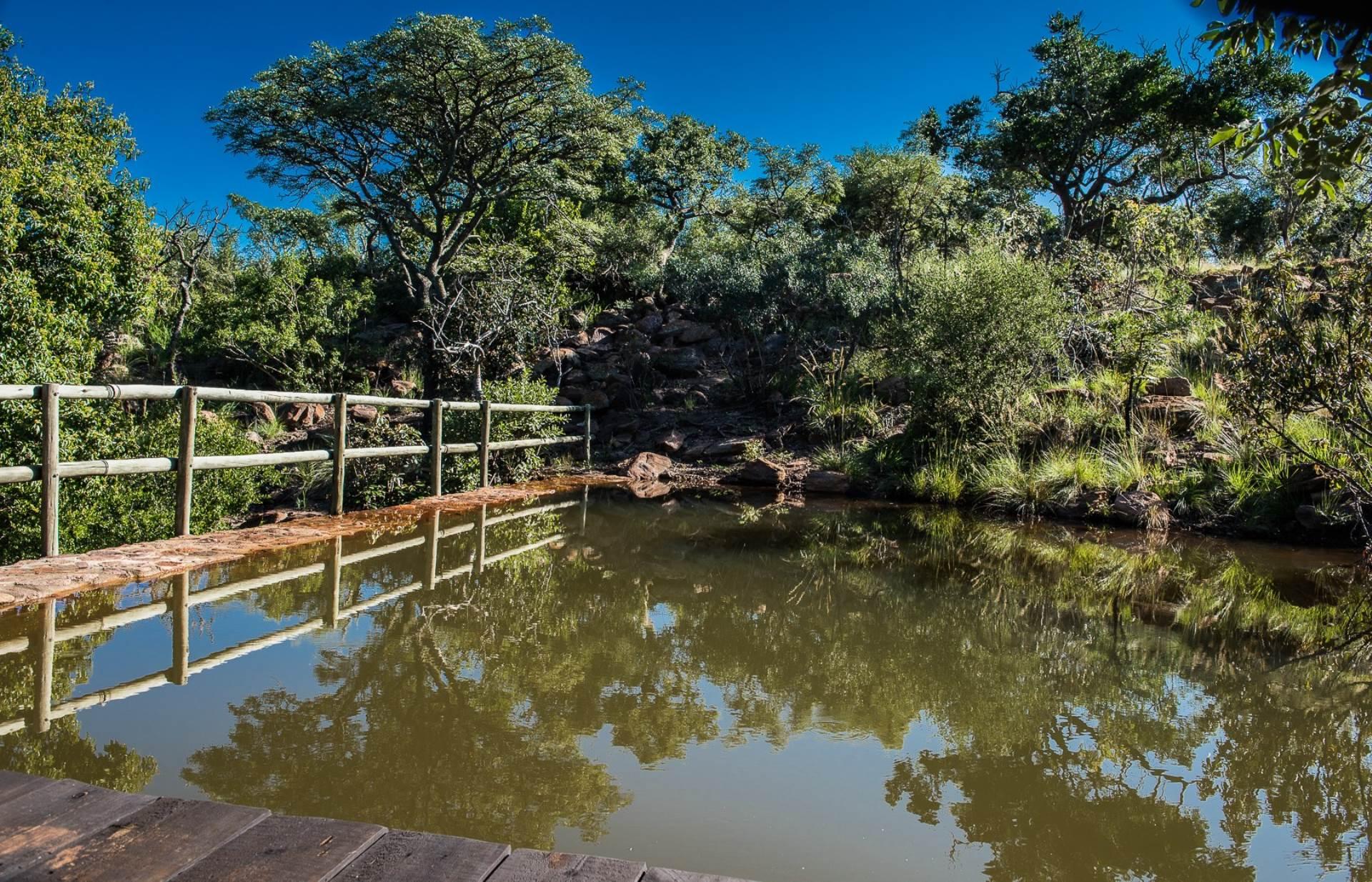 Farm For Sale In Waterberg