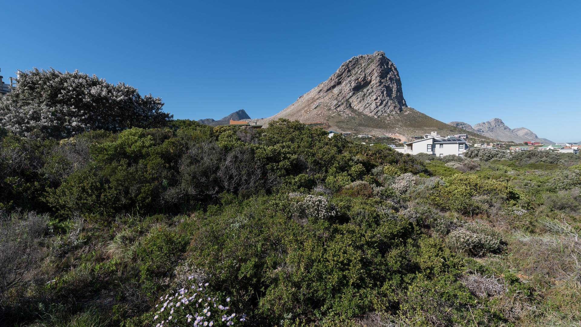 Vacant Land Agricultural For Sale In Rooi Els
