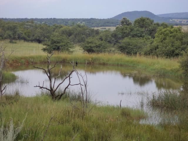 3 BedroomFarm For Sale In Nylstroom