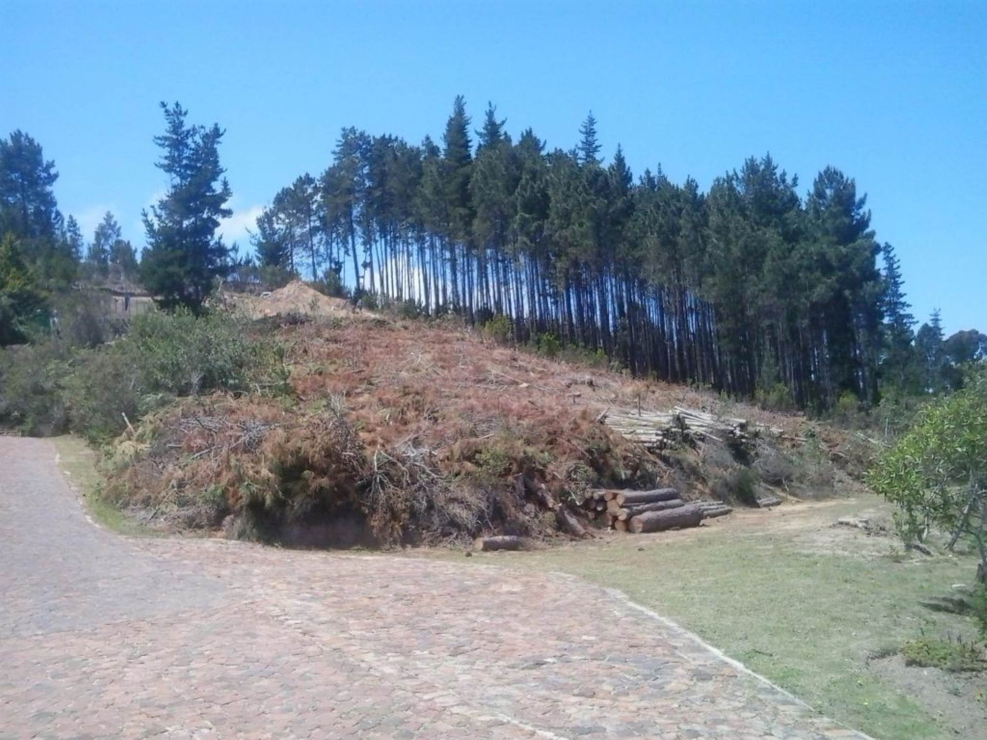 Knysna for sale property. Ref No: 13534279. Picture no 3