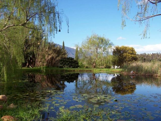 Swellendam property for sale. Ref No: 13479911. Picture no 32