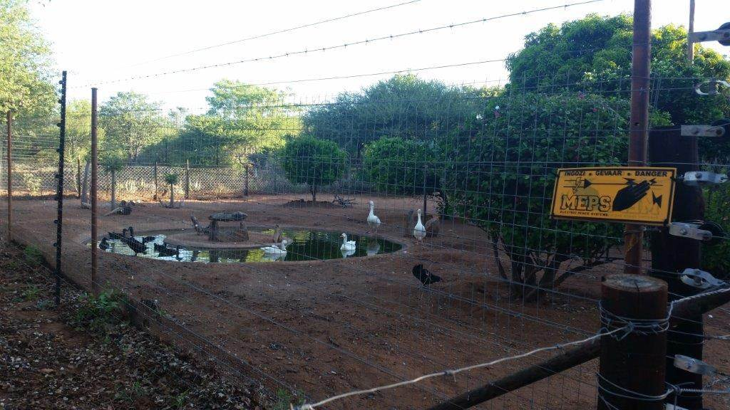 Musina Farm For Sale In Musina Musina Was Listed For R2