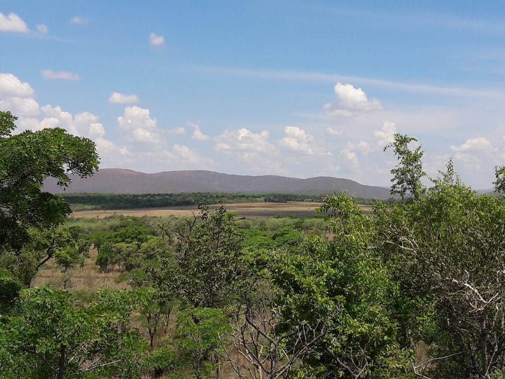 Vacant Land Agricultural For Sale In Vaalwater