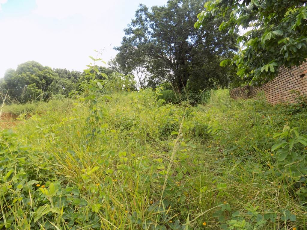 Vacant Land Residential For Sale In Duiwelskloof