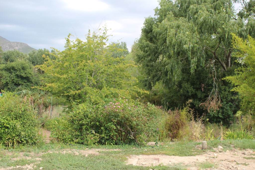 Vacant Land Residential For Sale In Greyton
